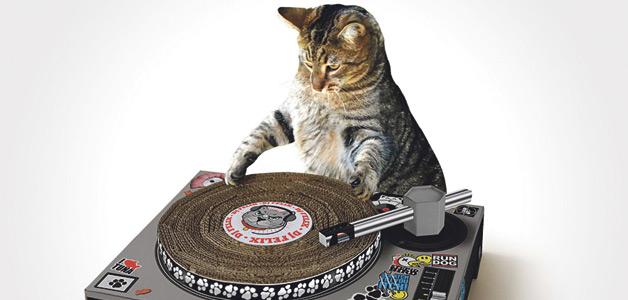 SUCK-UK-Cat-Playhouse-Scratch-Mat-1-900x600px_OK